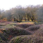 Trenches. Berkhamsted Common